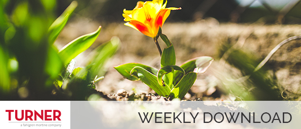 WEEKLY DOWNLOAD: Under the Influence