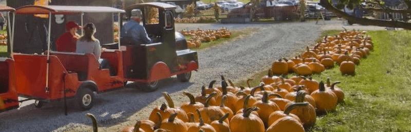 Halloween Travel: Fall's Best Haunted Destinations